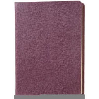 Die Neue Induktive Studienbibel - NeÜ